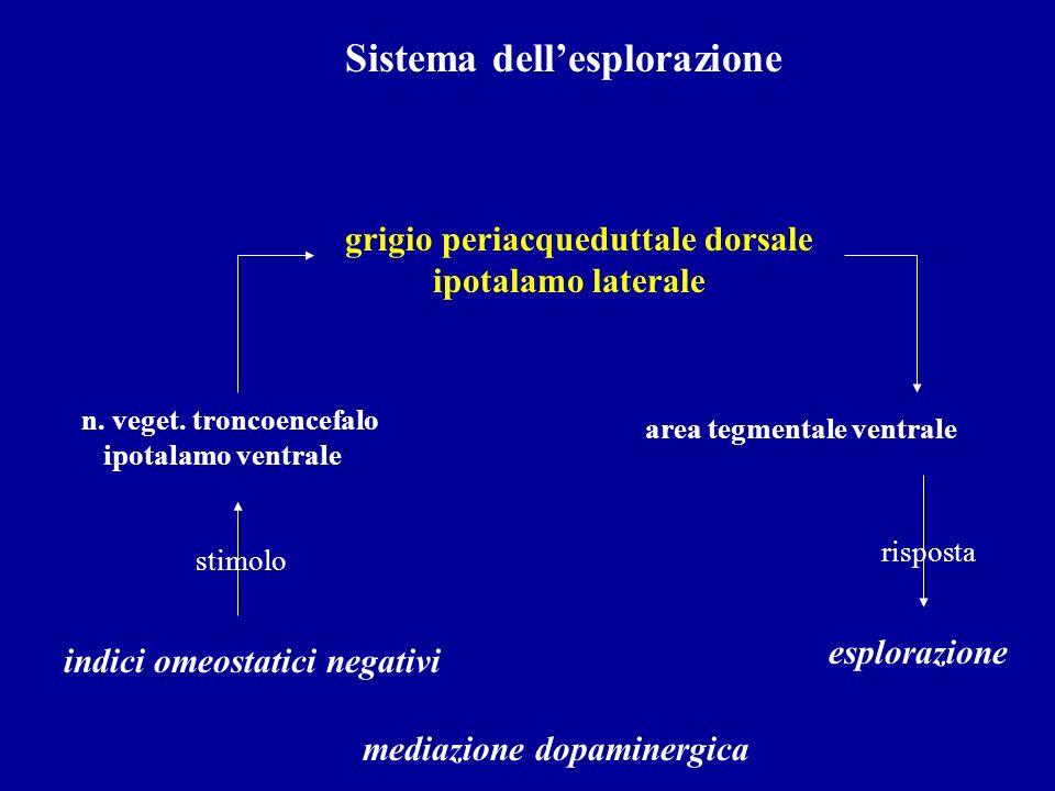 Sistema dellesplorazione indici omeostatici negativi n. veget. troncoencefalo ipotalamo ventrale grigio periacqueduttale dorsale ipotalamo laterale ar