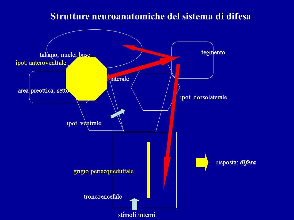 Strutture neuroanatomiche del sistema di difesa troncoencefalo ipot. ventrale ipot. laterale tegmento stimoli interni talamo, nuclei base risposta: di