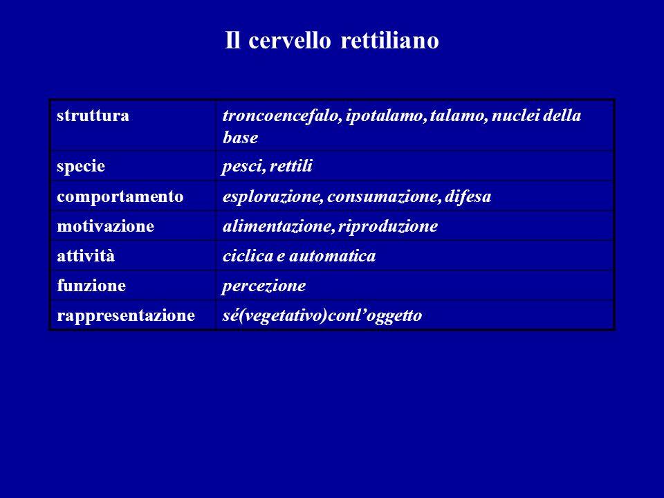 Il cervello rettiliano strutturatroncoencefalo, ipotalamo, talamo, nuclei della base speciepesci, rettili comportamentoesplorazione, consumazione, dif