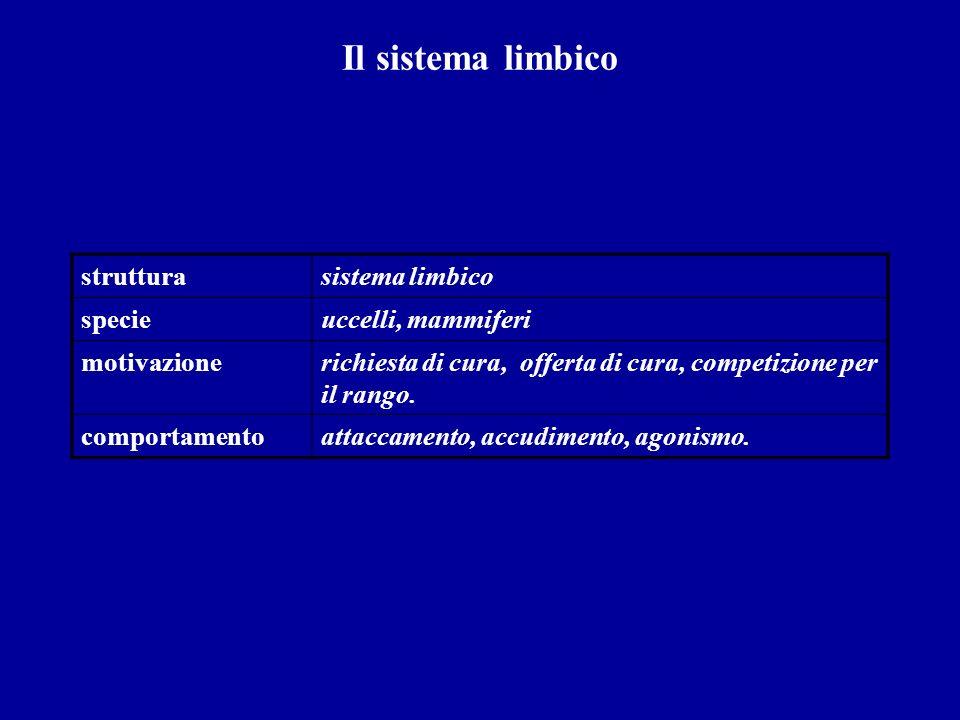 Il sistema limbico strutturasistema limbico specieuccelli, mammiferi motivazionerichiesta di cura, offerta di cura, competizione per il rango. comport