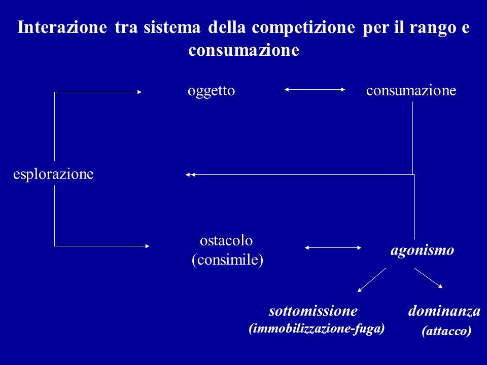 esplorazione oggettoconsumazione ostacolo (consimile) agonismo Interazione tra sistema della competizione per il rango e consumazione dominanza (attac