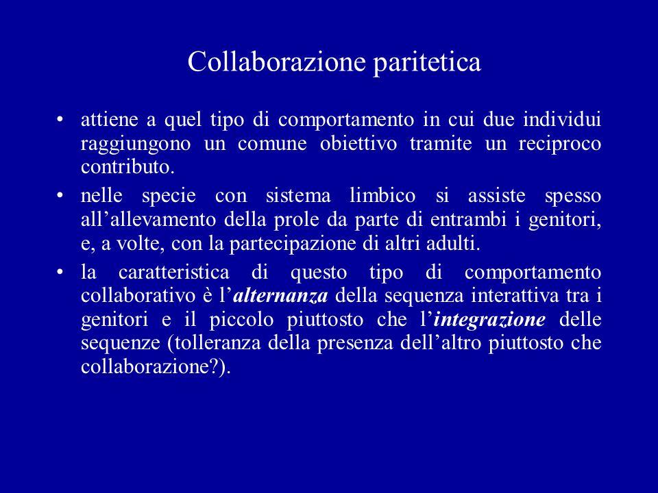 Collaborazione paritetica attiene a quel tipo di comportamento in cui due individui raggiungono un comune obiettivo tramite un reciproco contributo. n