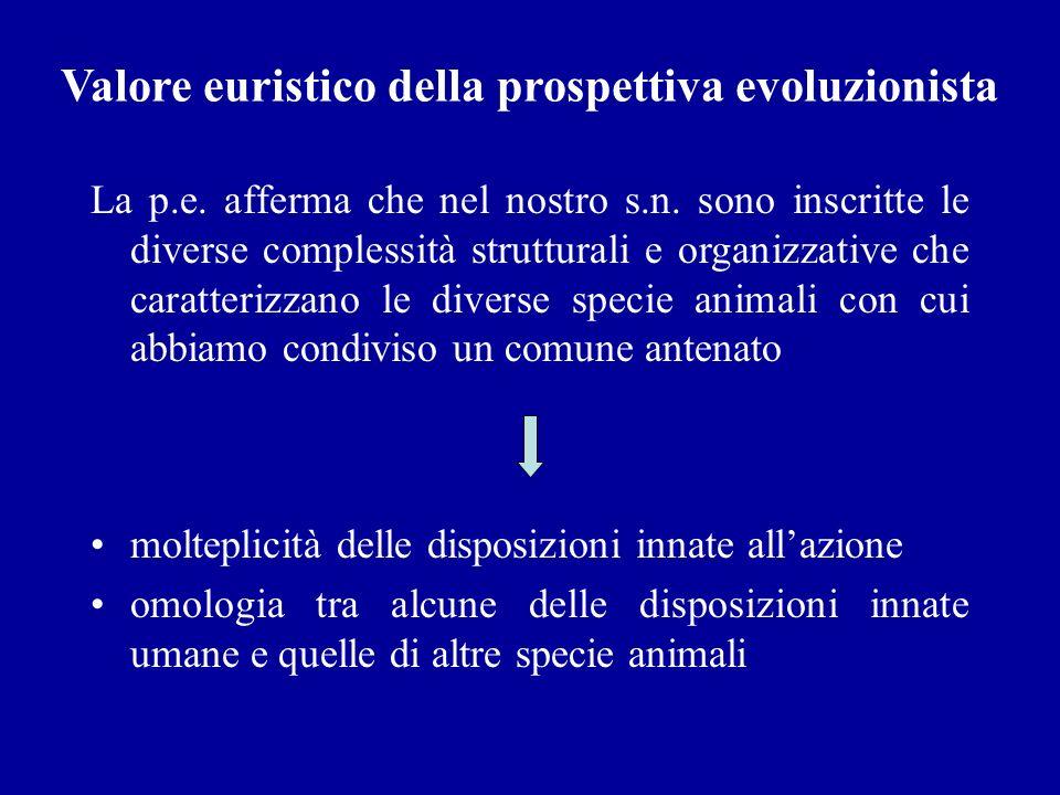 Valore euristico della prospettiva evoluzionista La p.e. afferma che nel nostro s.n. sono inscritte le diverse complessità strutturali e organizzative