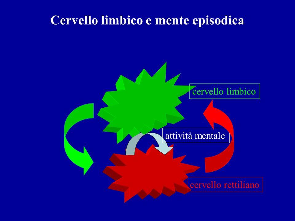 Cervello limbico e mente episodica attività mentale cervello rettiliano cervello limbico