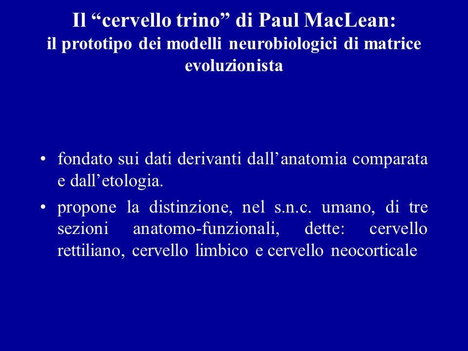 Il cervello trino di Paul MacLean: il prototipo dei modelli neurobiologici di matrice evoluzionista fondato sui dati derivanti dallanatomia comparata