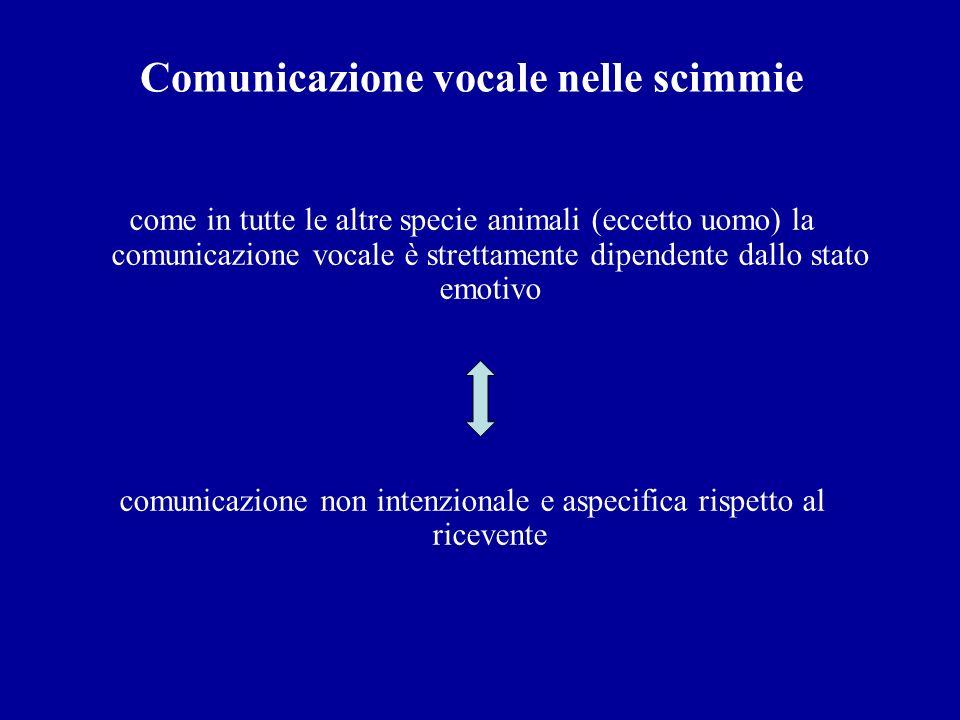 Comunicazione vocale nelle scimmie come in tutte le altre specie animali (eccetto uomo) la comunicazione vocale è strettamente dipendente dallo stato