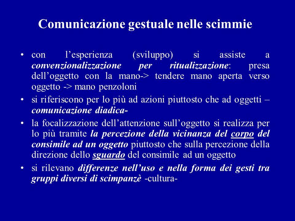 Comunicazione gestuale nelle scimmie con lesperienza (sviluppo) si assiste a convenzionalizzazione per ritualizzazione: presa delloggetto con la mano-