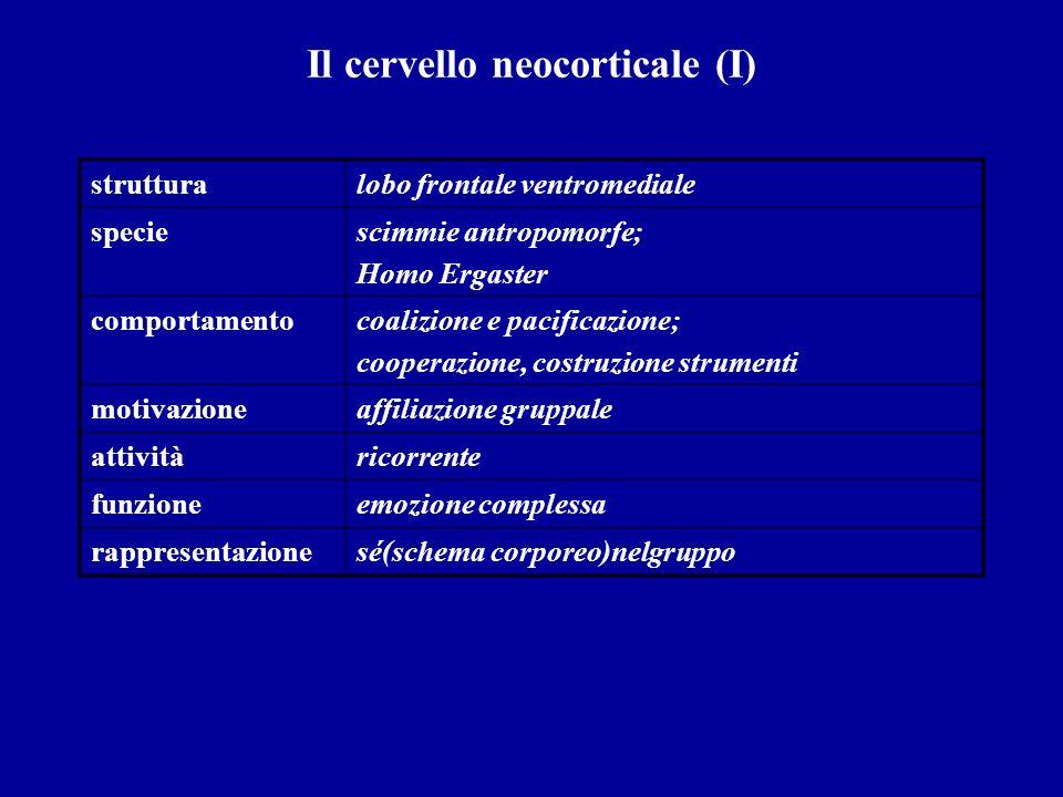 Il cervello neocorticale (I) strutturalobo frontale ventromediale speciescimmie antropomorfe; Homo Ergaster comportamentocoalizione e pacificazione; c