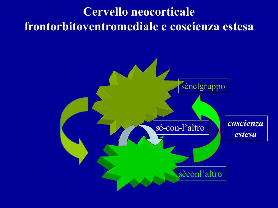 Cervello neocorticale frontorbitoventromediale e coscienza estesa sé-con-laltro sèconlaltro sènelgruppo coscienza estesa