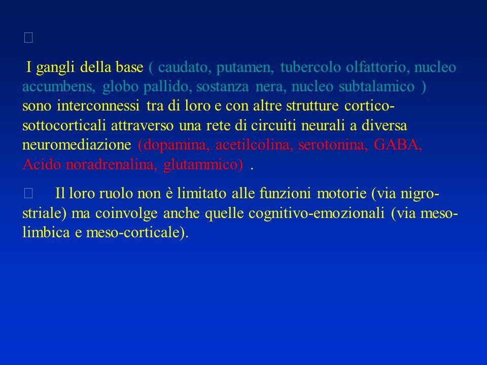  I gangli della base ( caudato, putamen, tubercolo olfattorio, nucleo accumbens, globo pallido, sostanza nera, nucleo subtalamico ) sono interconness