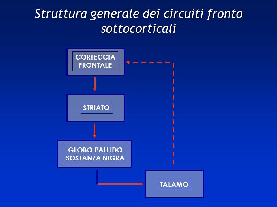 CORTECCIA FRONTALE GLOBO PALLIDO SOSTANZA NIGRA STRIATO TALAMO Struttura generale dei circuiti fronto sottocorticali