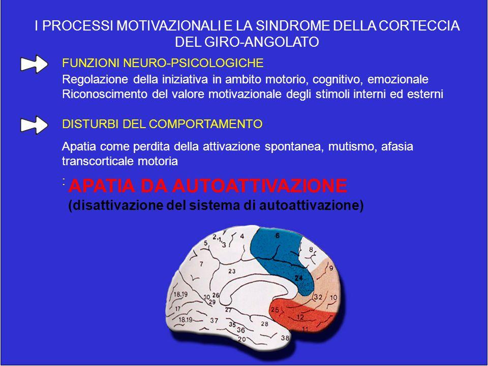 I PROCESSI MOTIVAZIONALI E LA SINDROME DELLA CORTECCIA DEL GIRO-ANGOLATO FUNZIONI NEURO-PSICOLOGICHE Regolazione della iniziativa in ambito motorio, c