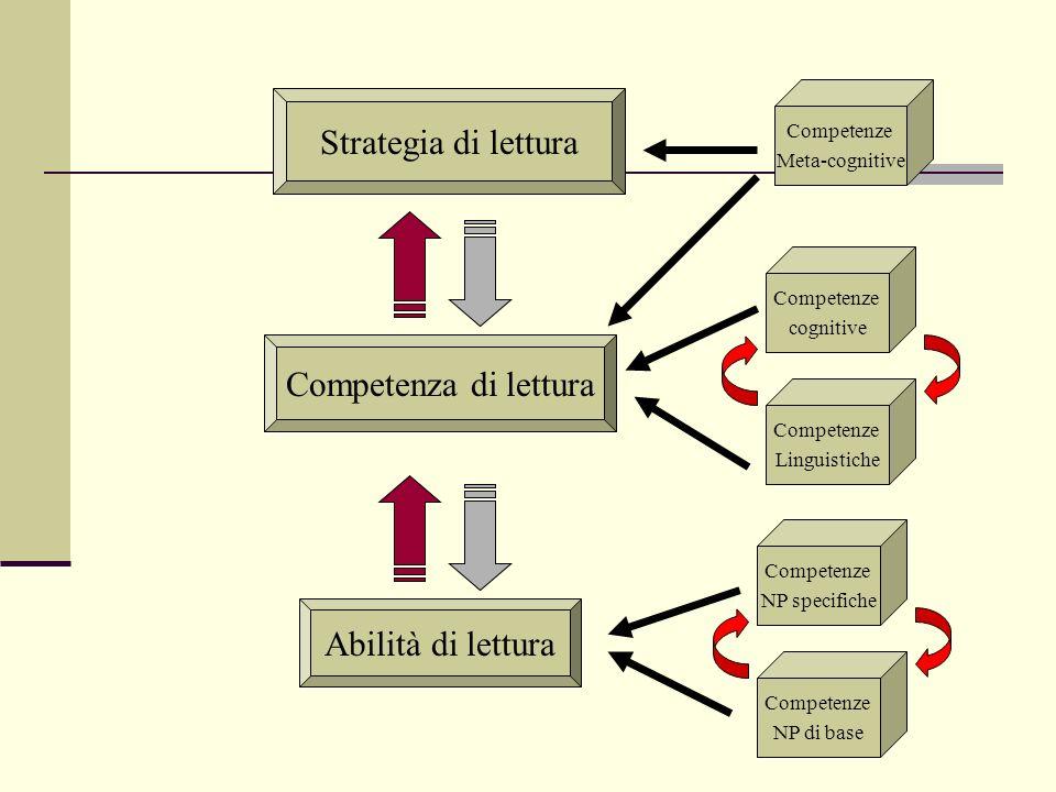 Abilità di lettura Competenza di lettura Strategia di lettura Competenze NP di base Competenze NP specifiche Competenze Linguistiche Competenze cognit