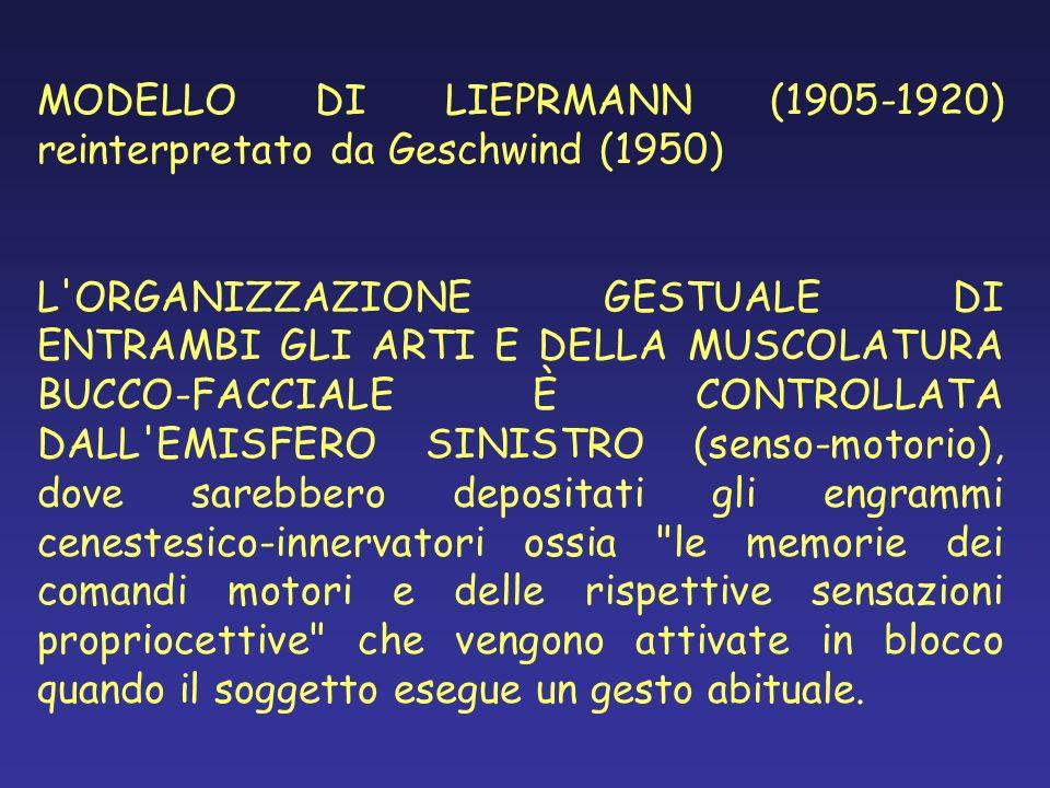 MODELLO DI LIEPRMANN (1905-1920) reinterpretato da Geschwind (1950) L'ORGANIZZAZIONE GESTUALE DI ENTRAMBI GLI ARTI E DELLA MUSCOLATURA BUCCO-FACCIALE