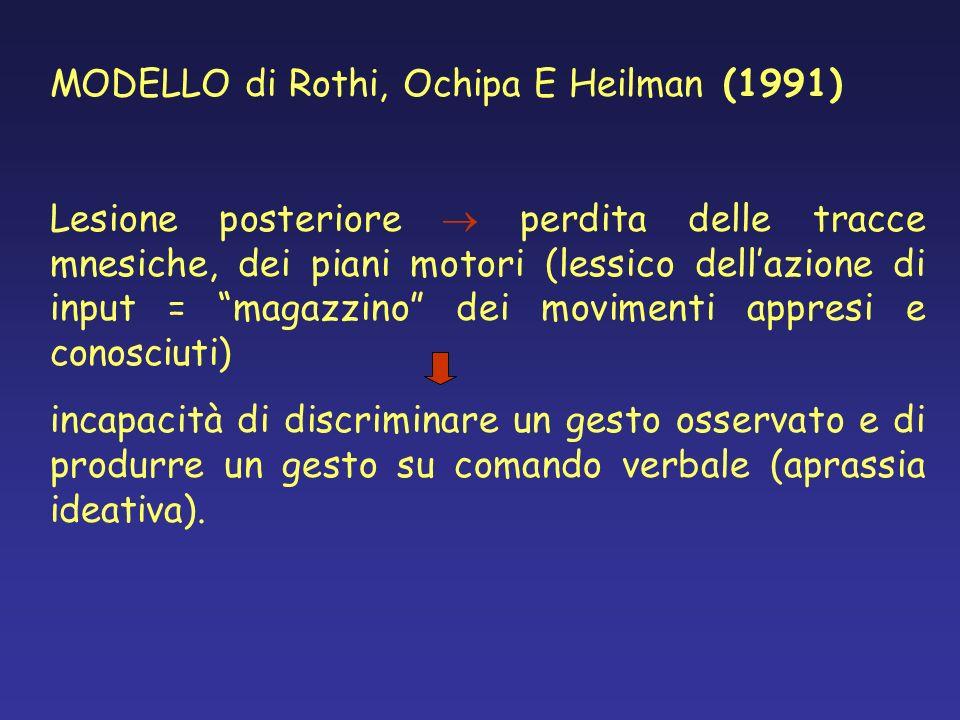 MODELLO di Rothi, Ochipa E Heilman (1991) Lesione posteriore perdita delle tracce mnesiche, dei piani motori (lessico dellazione di input = magazzino