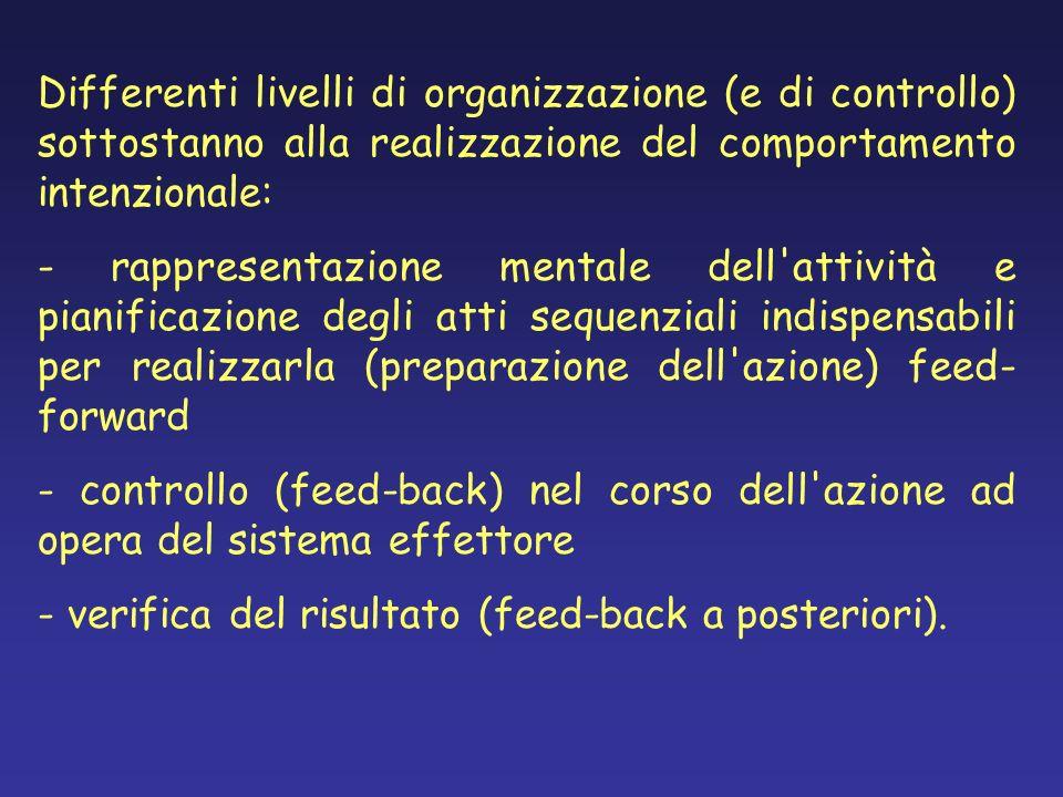 Differenti livelli di organizzazione (e di controllo) sottostanno alla realizzazione del comportamento intenzionale: - rappresentazione mentale dell'a