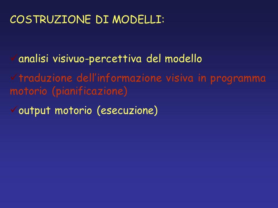 COSTRUZIONE DI MODELLI: analisi visivuo-percettiva del modello traduzione dellinformazione visiva in programma motorio (pianificazione) output motorio