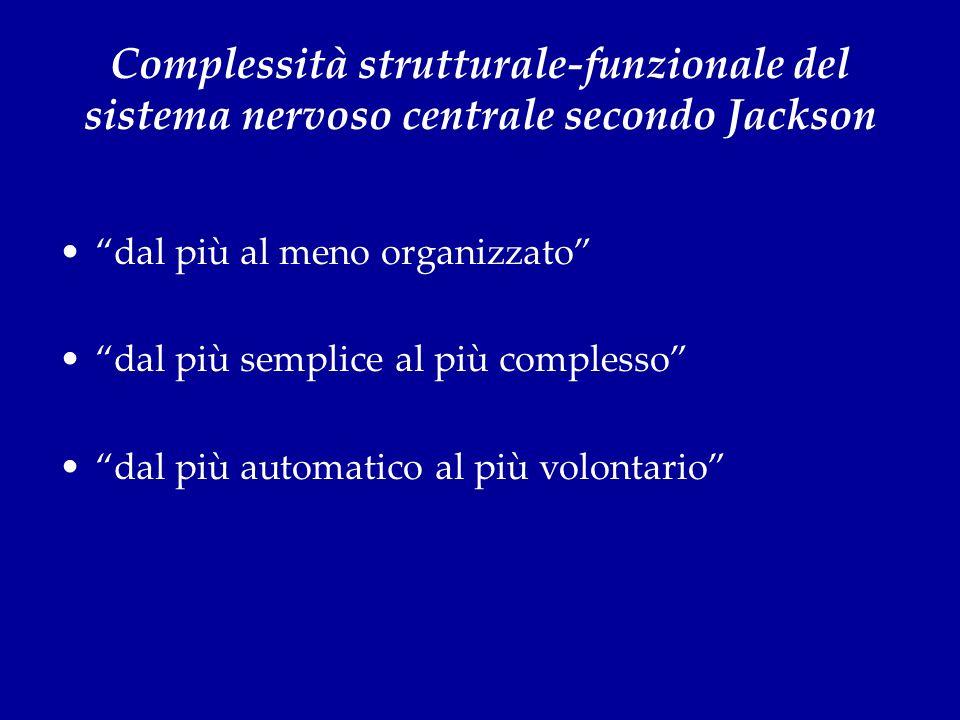 Complessità strutturale-funzionale del sistema nervoso centrale secondo Jackson dal più al meno organizzato dal più semplice al più complesso dal più