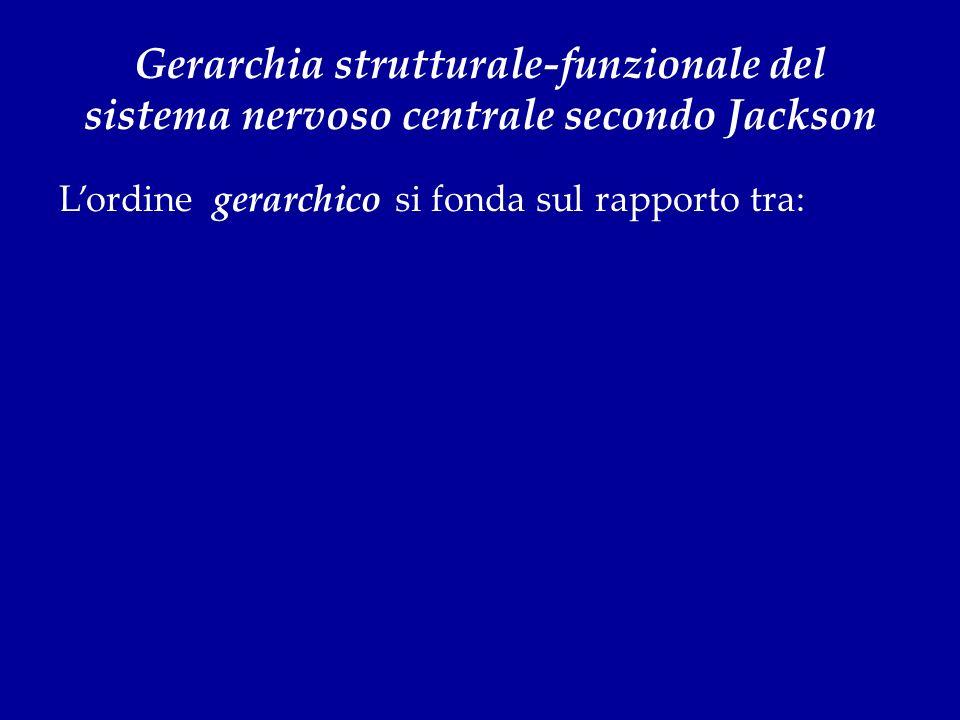 Gerarchia strutturale-funzionale del sistema nervoso centrale secondo Jackson Lordine gerarchico si fonda sul rapporto tra: