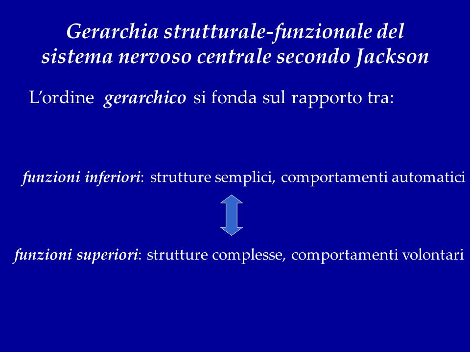 funzioni inferiori: strutture semplici, comportamenti automatici funzioni superiori: strutture complesse, comportamenti volontari Gerarchia struttural