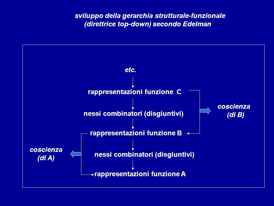 rappresentazioni funzione C nessi combinatori (disgiuntivi) rappresentazioni funzione B coscienza (di B) nessi combinatori (disgiuntivi) rappresentazi