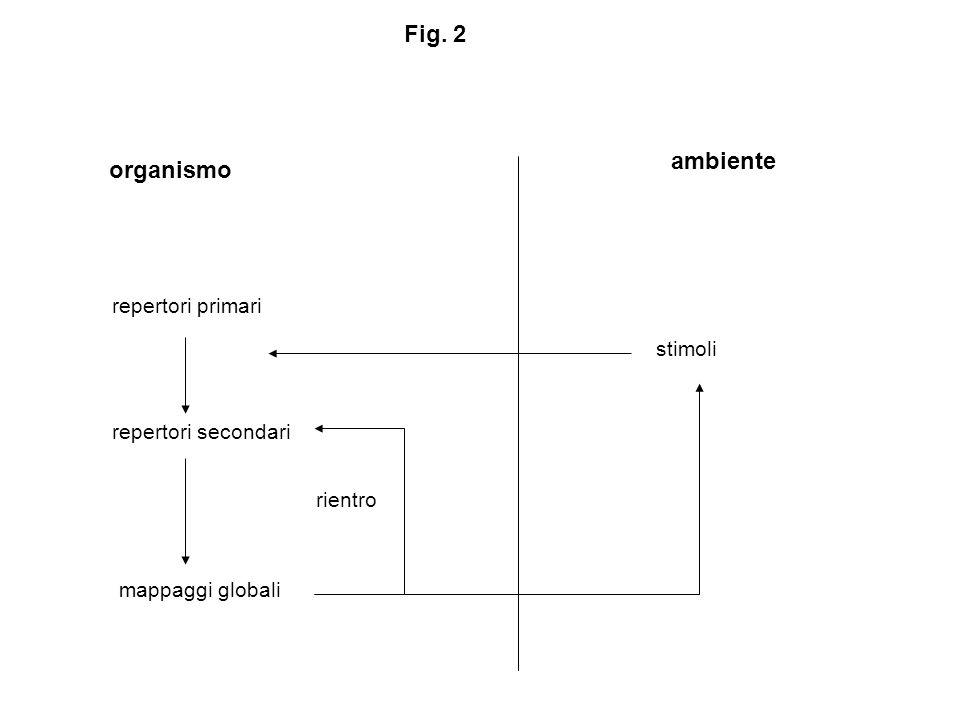 organismo ambiente repertori primari repertori secondari mappaggi globali stimoli rientro Fig. 2