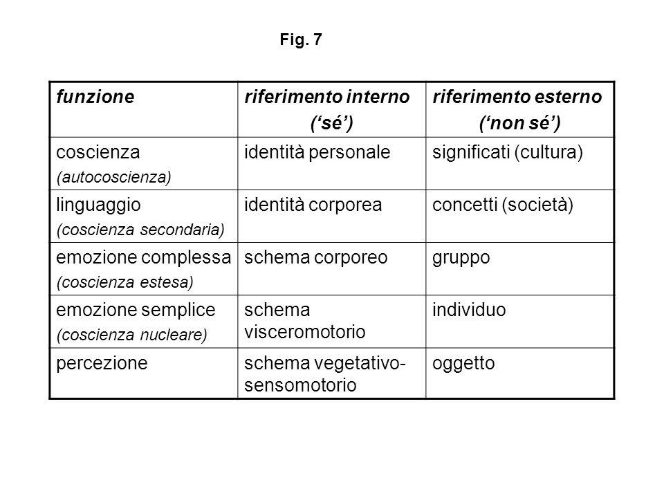 funzioneriferimento interno (sé) riferimento esterno (non sé) coscienza (autocoscienza) identità personalesignificati (cultura) linguaggio (coscienza