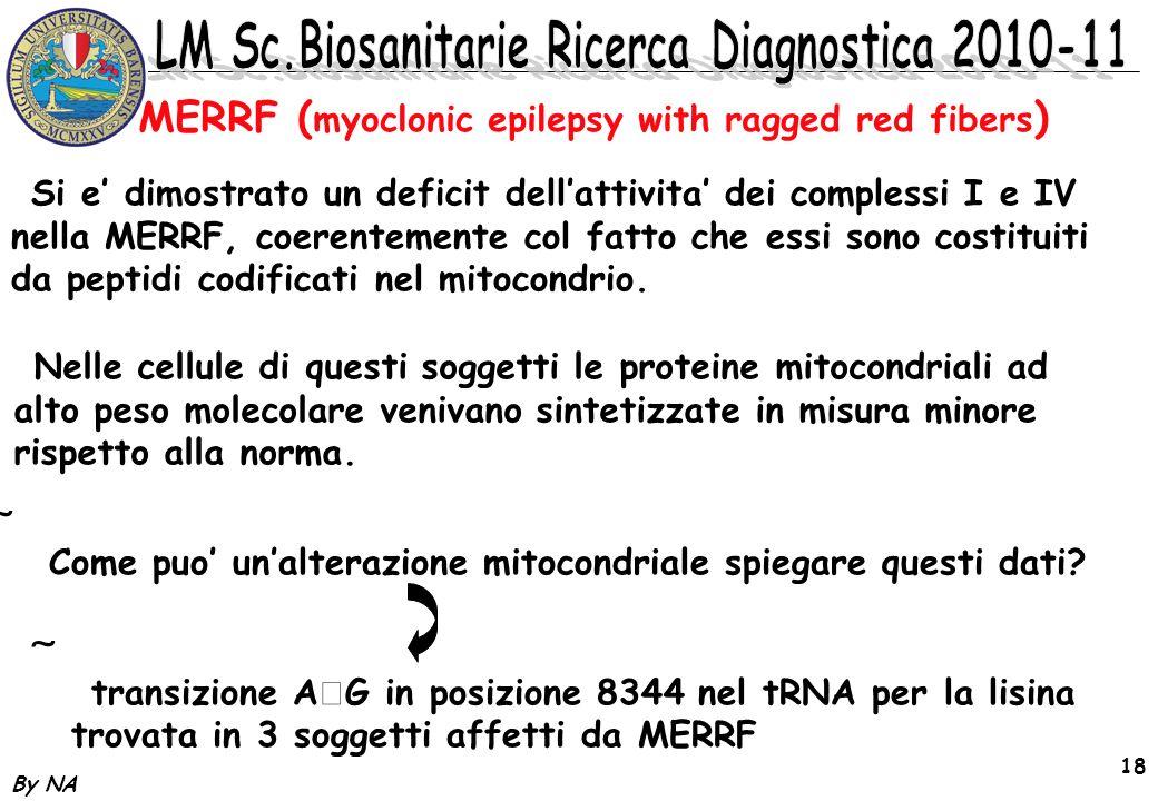By NA 18 / Si e dimostrato un deficit dellattivita dei complessi I e IV nella MERRF, coerentemente col fatto che essi sono costituiti da peptidi codif