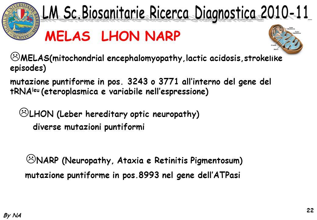 By NA 22 MELAS(mitochondrial encephalomyopathy,lactic acidosis,strokelike episodes) mutazione puntiforme in pos. 3243 o 3771 allinterno del gene del t