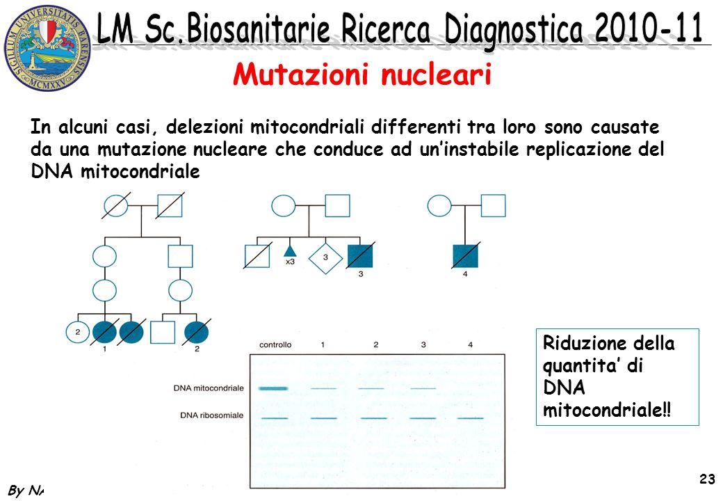 By NA 23 In alcuni casi, delezioni mitocondriali differenti tra loro sono causate da una mutazione nucleare che conduce ad uninstabile replicazione de