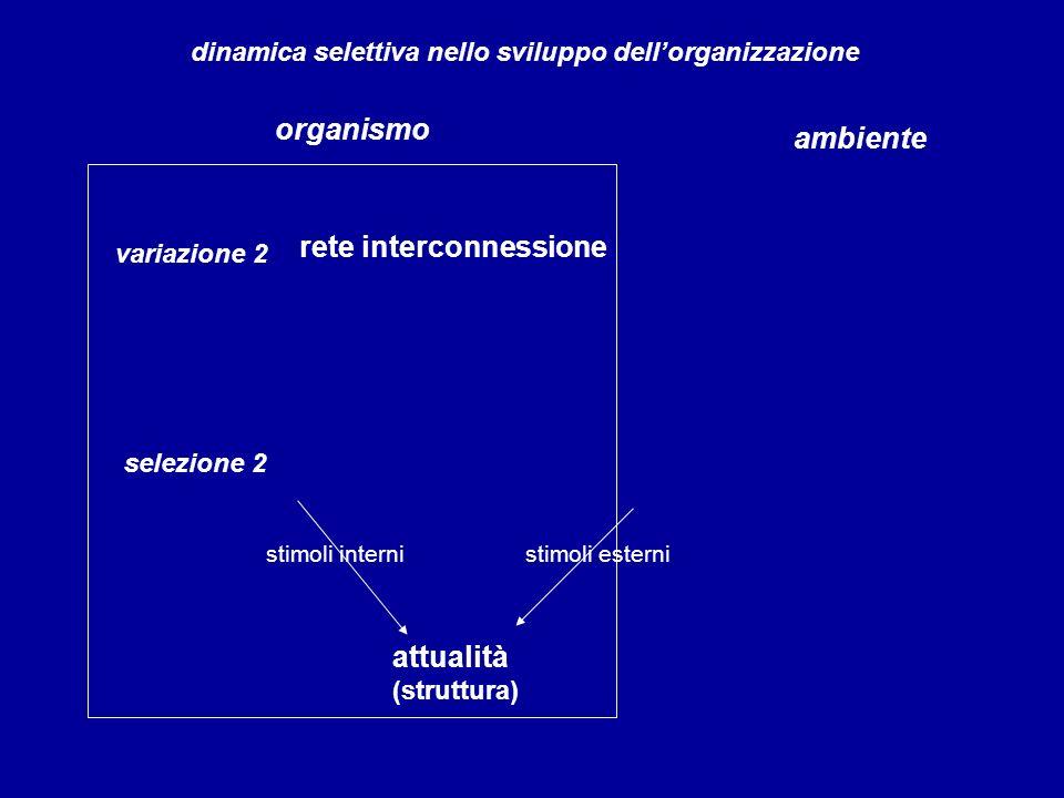rete interconnessione variazione 2 organismo ambiente dinamica selettiva nello sviluppo dellorganizzazione selezione 2 attualità (struttura) stimoli i