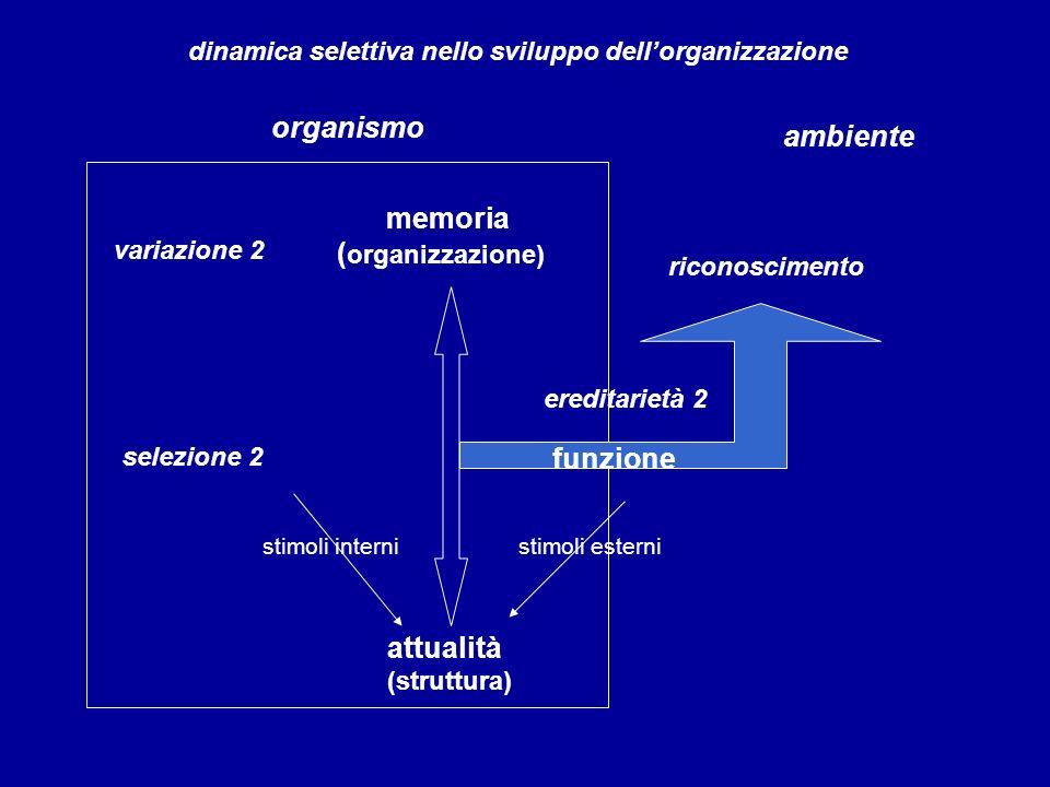 memoria ( organizzazione) variazione 2 organismo ambiente dinamica selettiva nello sviluppo dellorganizzazione selezione 2 ereditarietà 2 attualità (s