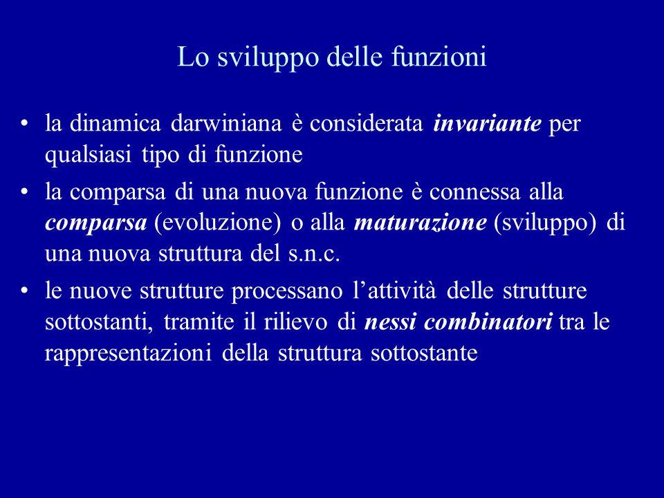 Lo sviluppo delle funzioni la dinamica darwiniana è considerata invariante per qualsiasi tipo di funzione la comparsa di una nuova funzione è connessa