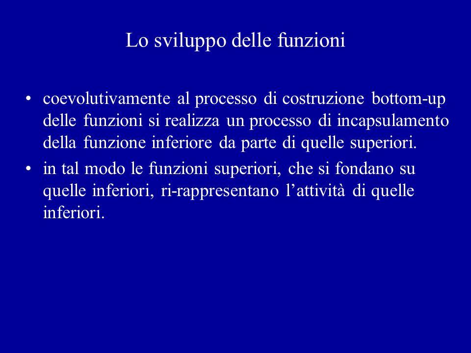 Lo sviluppo delle funzioni coevolutivamente al processo di costruzione bottom-up delle funzioni si realizza un processo di incapsulamento della funzio