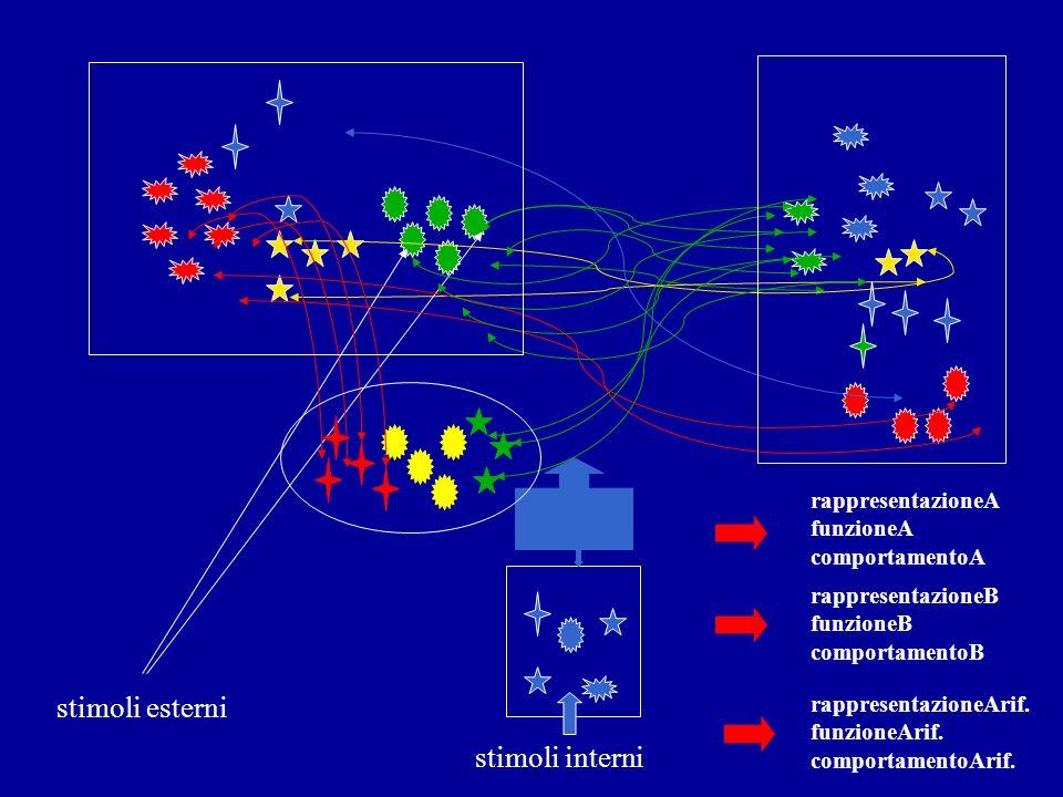 stimoli esterni stimoli interni rappresentazioneA funzioneA comportamentoA rappresentazioneB funzioneB comportamentoB rappresentazioneArif. funzioneAr