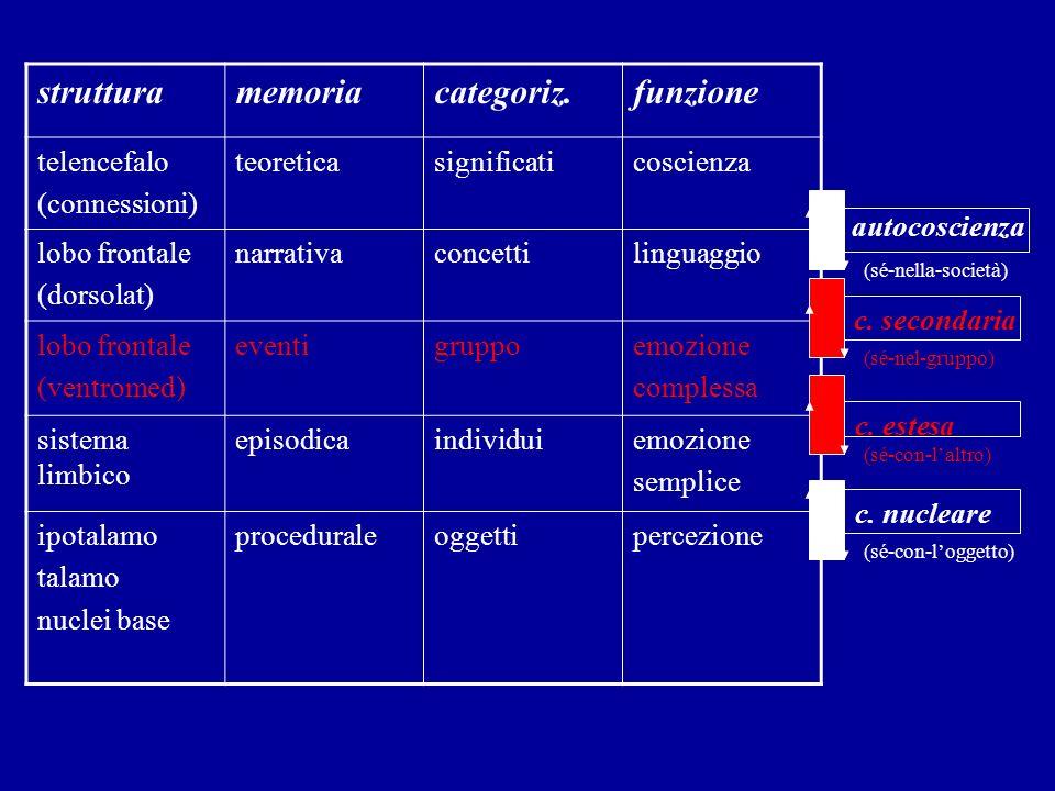 strutturamemoriacategoriz.funzione telencefalo (connessioni) teoreticasignificaticoscienza lobo frontale (dorsolat) narrativaconcettilinguaggio lobo f