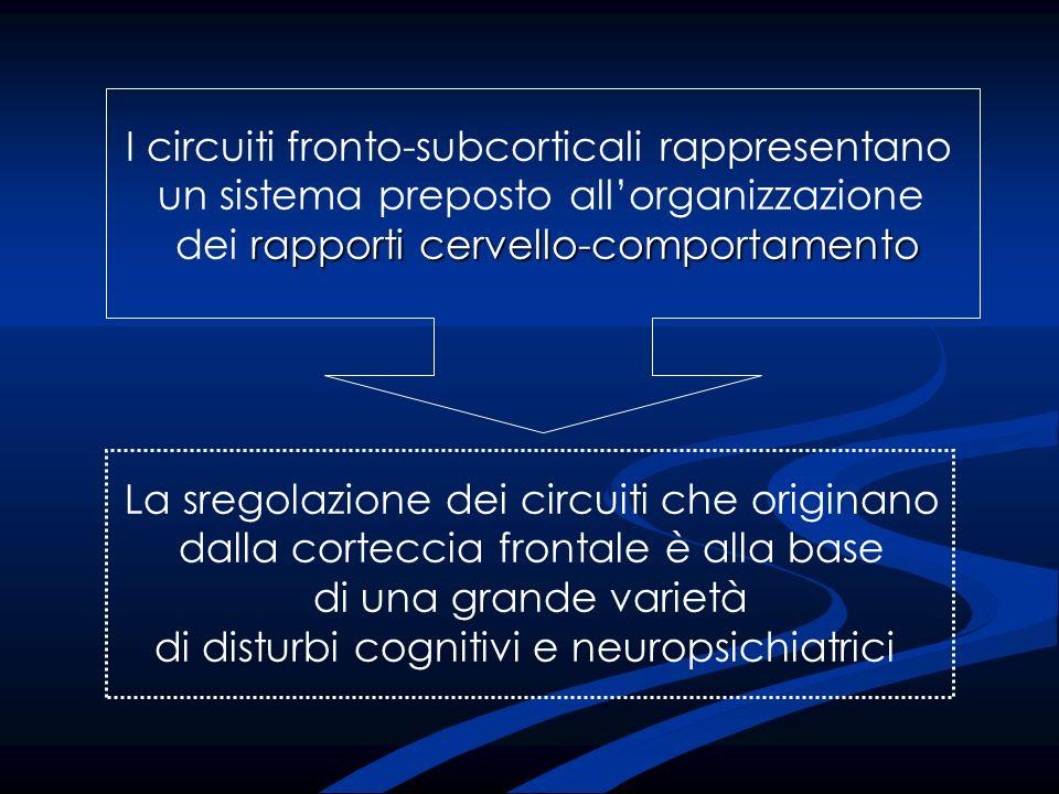 I circuiti fronto-subcorticali rappresentano un sistema preposto allorganizzazione rapporti cervello-comportamento dei rapporti cervello-comportamento