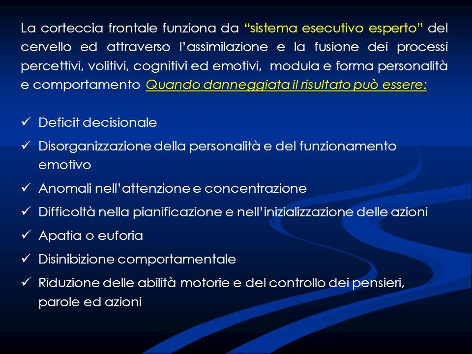 Deficit decisionale Disorganizzazione della personalità e del funzionamento emotivo Anomali nellattenzione e concentrazione Difficoltà nella pianifica