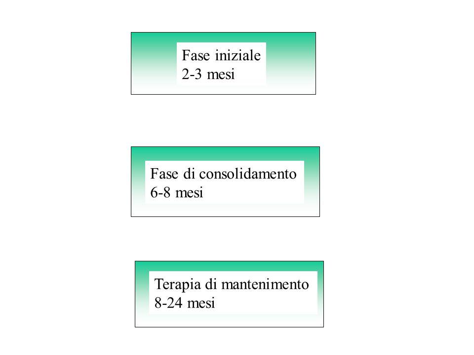 Fase iniziale 2-3 mesi Fase di consolidamento 6-8 mesi Terapia di mantenimento 8-24 mesi