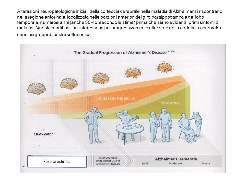 Alterazioni neuropatologiche iniziali della corteccia cerebrale nella malattia di Alzheimer si riscontrano nella regione entorinale, localizzata nelle