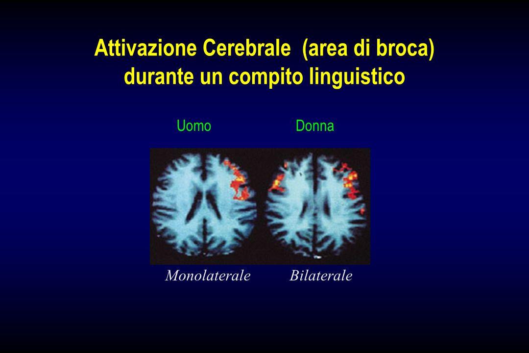 Attivazione Cerebrale (area di broca) durante un compito linguistico UomoDonna Monolaterale Bilaterale