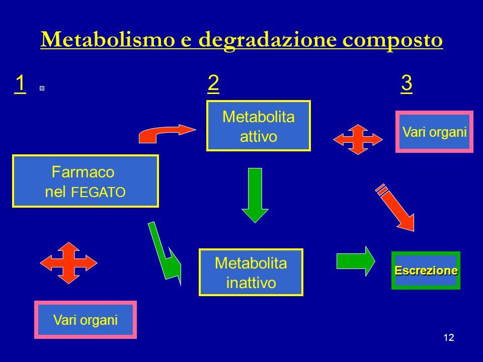 12 Metabolismo e degradazione composto 123123 Farmaco nel FEGATO Metabolita attivo Metabolita inattivo Escrezione Vari organi