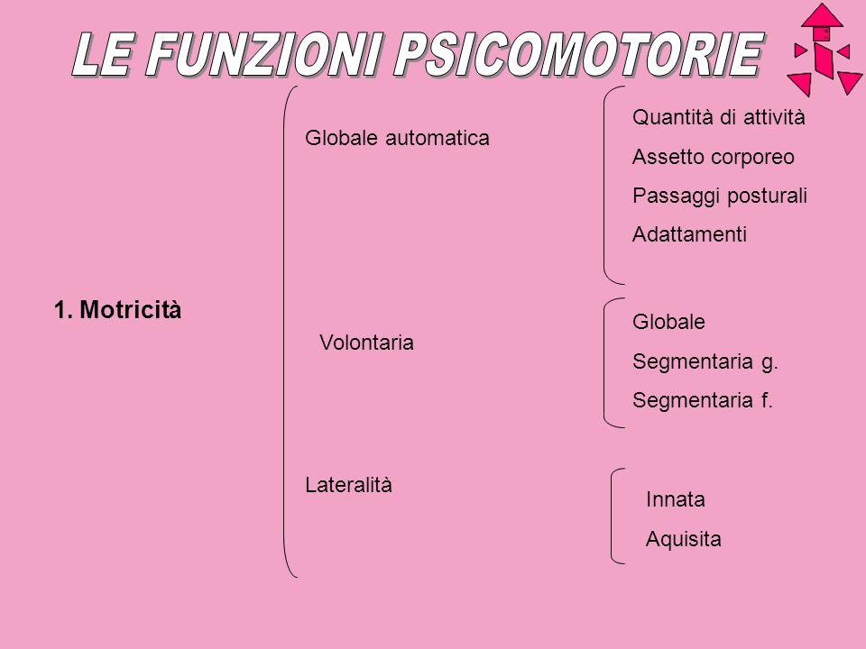 Globale automatica Volontaria Lateralità Quantità di attività Assetto corporeo Passaggi posturali Adattamenti Globale Segmentaria g. Segmentaria f. In
