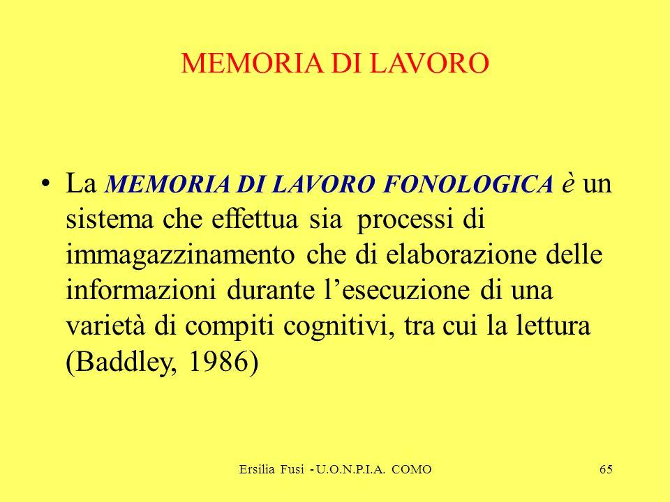 Ersilia Fusi - U.O.N.P.I.A. COMO65 MEMORIA DI LAVORO La MEMORIA DI LAVORO FONOLOGICA è un sistema che effettua sia processi di immagazzinamento che di