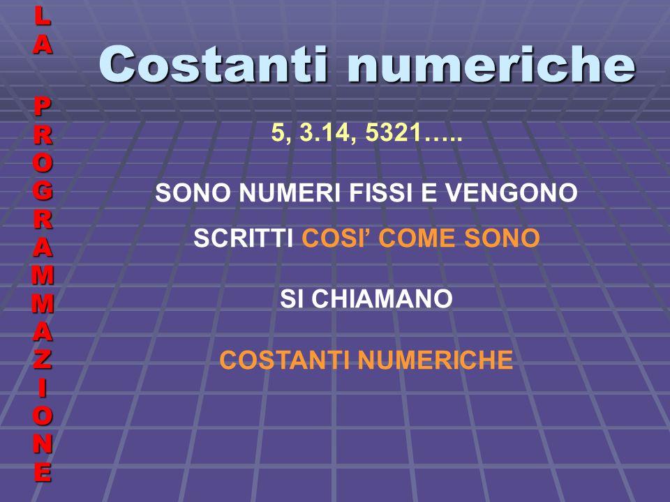 Costanti numeriche LALA PROGRAMMAZIONE PROGRAMMAZIONELALA PROGRAMMAZIONE PROGRAMMAZIONE 5, 3.14, 5321…..