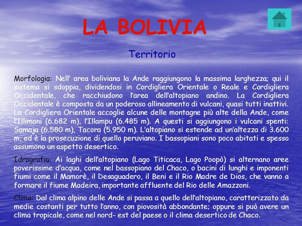 LA BOLIVIA Territorio Morfologia: Nell area boliviana la Ande raggiungono la massima larghezza; qui il sistema si sdoppia, dividendosi in Cordigliera
