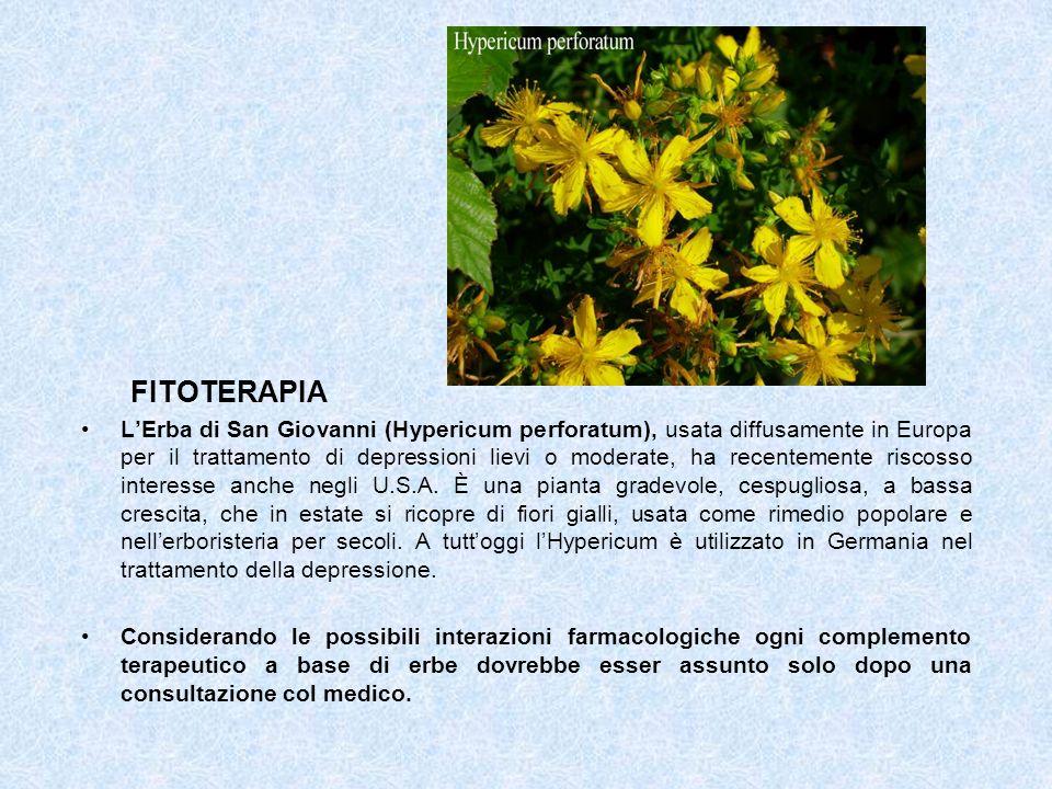 FITOTERAPIA LErba di San Giovanni (Hypericum perforatum), usata diffusamente in Europa per il trattamento di depressioni lievi o moderate, ha recentem