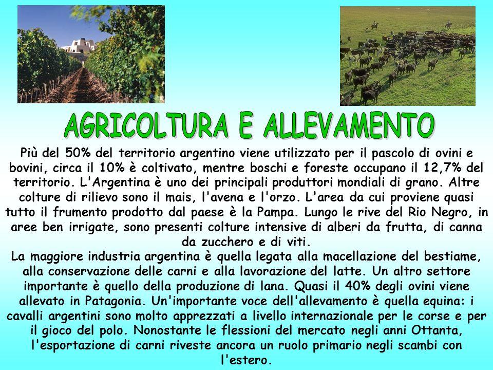Più del 50% del territorio argentino viene utilizzato per il pascolo di ovini e bovini, circa il 10% è coltivato, mentre boschi e foreste occupano il 12,7% del territorio.