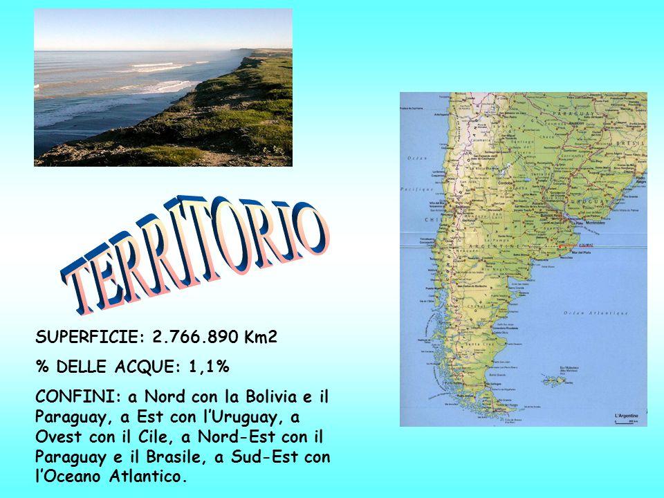 SUPERFICIE: 2.766.890 Km2 % DELLE ACQUE: 1,1% CONFINI: a Nord con la Bolivia e il Paraguay, a Est con lUruguay, a Ovest con il Cile, a Nord-Est con il Paraguay e il Brasile, a Sud-Est con lOceano Atlantico.