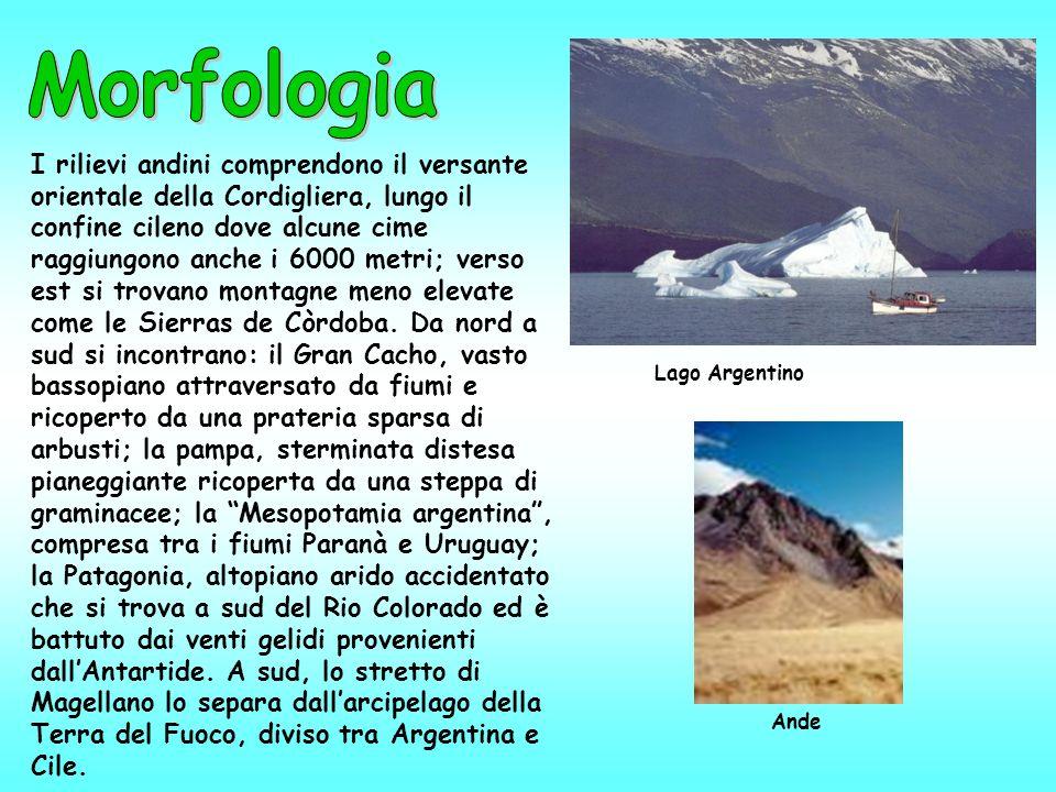 I rilievi andini comprendono il versante orientale della Cordigliera, lungo il confine cileno dove alcune cime raggiungono anche i 6000 metri; verso e